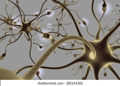 Neurons, transferring pulses and generating information, vector illustration EPS 8.