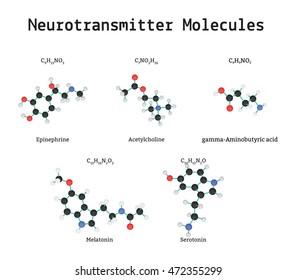 Neurotransmitter molecules set