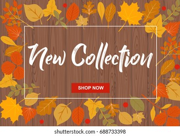 New collection vector illustration with autumn leaves on  dark wooden background