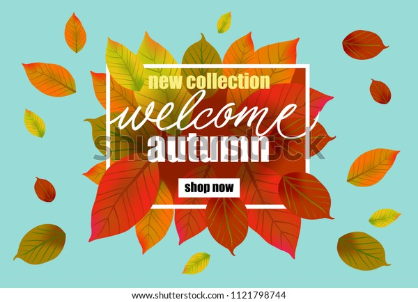 New collection welcome autumn Shop now lettering. Modern creative inscription in frame with falling leaves. Illustration with lettering can be used for banner, posters and leaflets