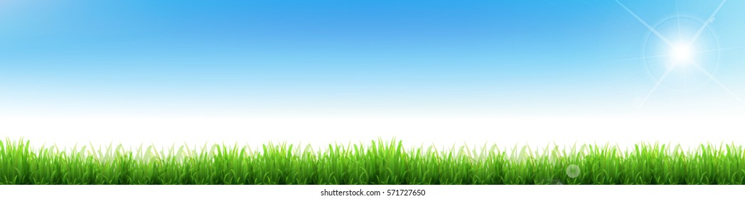 New green grass Lawn background