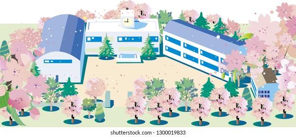 New school term of Sakura Bloom School