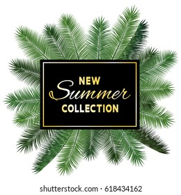 New Summer Collection sale vector poster. Golden text on black fame and palm tree leaves illustration. Stylish banner with exotic tropical background.