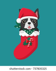 New Year Icon dog breed French Bulldog. The puppy sits in a Christmas sock.