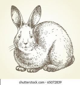 new year rabbit drawing
