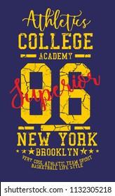 New York Basketball graphic design vector art