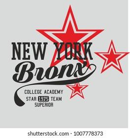 New york Star graphic design vector art