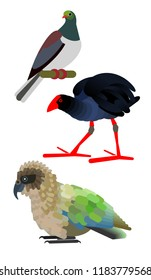 the New Zealand birds