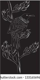 New zealand native bird - Tui