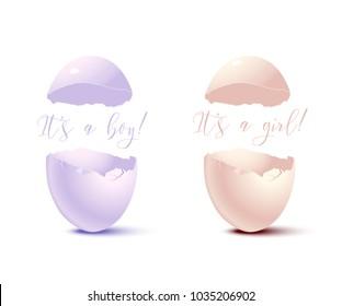Newborn card elements. Vector pink eggshell with It's a Girl text and blue eggshell with It's a Boy text.