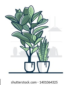 Nice illustration of two plants in beutiful white pots. Room interior with window and books on the background.