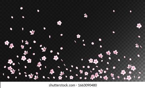 Nice Sakura Blossom Isolated Vector. Tender Flying 3d Petals Wedding Frame. Japanese Nature Flowers Illustration. Valentine, Mother's Day Summer Nice Sakura Blossom Isolated on Black