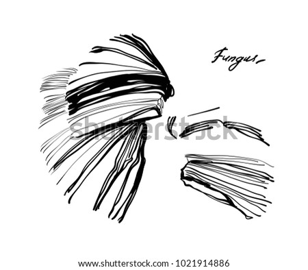 Nifty Gentle Hand Drawn Fungus Stripe Stock Vector (Royalty