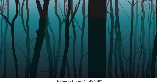 Night fog forest nature background