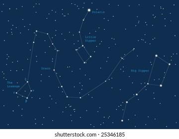 night sky constiolations - vector