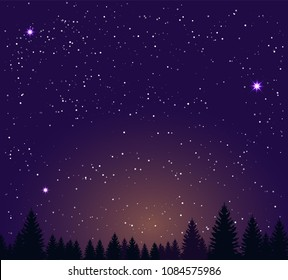 Night sky stars and night forest. Vector illustration landscape background