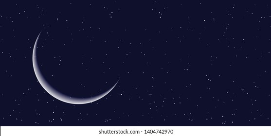 Night starry sky half full moon Equinox planet Earth day Earth's Waning Crescent Gibbous moon means Vector Moonlight evening alchemy astrology symbol icon icons sign signs Phases pine tree trees funny