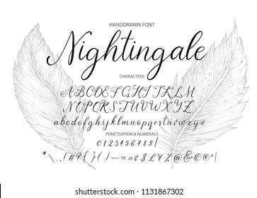 Nightingale. Handdrawn calligraphic vector font. Modern gentle calligraphy.