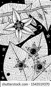 Nightshade - flower illustration. Black and white ink floral drawing. Coloring book for adults. Line art. Vector artwork.