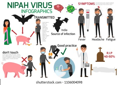 Nipah virus infographics element vector illustration. Health concept character cartoon.