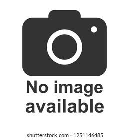 No image available icon. Photo camera icon. Flat, vector illustration.