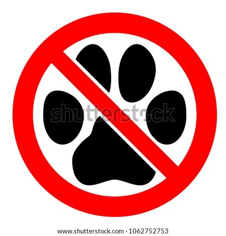 No Pets Allowed Sign Black Cat