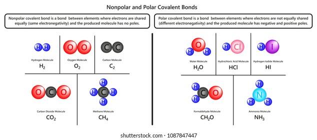Chemical Bond Stock Vectors Images Vector Art Shutterstock