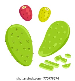 Nopal cactus paddle, peeled and cut, with prickly pear fruit. National Mexican cuisine food ingredient. Hand drawn cartoon style vector illustration.
