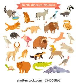 North America animals vector illustration. North America animals for children and kids.  North America mammals. Animals cartoon style. Big vector set.Isolated on white. Preschool,baby travelling,drawn