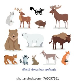 North American animals cartoon set. Deer, moose, fox, wild boar, bison, wolf, raccoon, hare, lynx, skunk flat vectors isolated on white background. North America fauna species collection