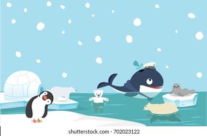 North pole animal background