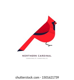 Northern cardinal animal illustration of red bird on isolated white background. Educational wildlife design with fauna species name label.