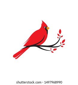 Northern Cardinal bird hanging tree branch vector on a white background