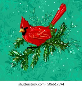 Northern cardinal, Red Cardinal bird, vector illustration bird, wildlife. Hand Drawn Vector Illustration of bird. Winter illustration