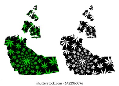 Northwest Territories (provinces and territories of Canada) map is designed cannabis leaf green and black, Northwest Territories map made of marijuana (marihuana,THC) foliage,