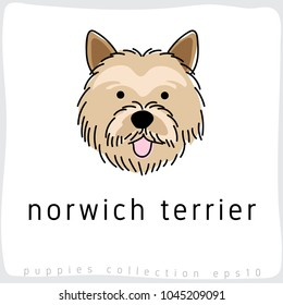 Norwich Terrier : Dog Breed Collection : Vector Illustration