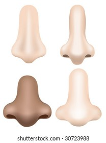 Noses - Vector Illustration (Made with Gradient Meshes)