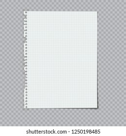 notebook paper ripped from a spiral binding vector illustration