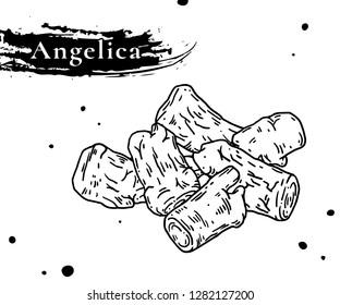 Nourishing Chinese herbal medicine angelica tablets. Angelica sinensis or Angelica archangelica or dong quai or female ginseng.medicinal herb.  Angelica root used in Chinese Medicinal diet therapy