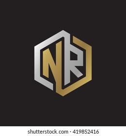 NR initial letters looping linked hexagon elegant logo golden silver black background