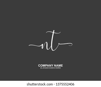 NT Initial handwriting logo vector