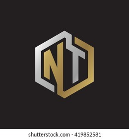 NT initial letters looping linked hexagon elegant logo golden silver black background