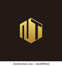 NT Logo Monogram with Negative space gold colors