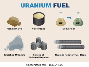 The nuclear reactor fuel cycle - vector