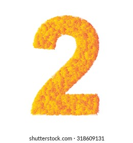 Number 2 made from orange grass on a plain white background