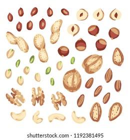 Nut mix. Set with nuts. walnut, hazelnuts, peanuts, cashews, almonds, pistachio, shell.