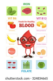 Nutritious Food good for health blood concept infographics.vector illustration