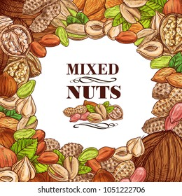 Nuts and fruit seeds or beans mix sketch poster. Vector peanut or coconut and hazelnut, pistachio or almond walnut and legume bean pod, macadamia or filbert nut and pumpkin or sunflower seeds