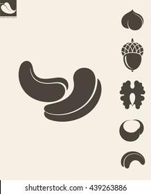 Nuts. Icon set. Hazelnut. Cashews. Walnut. Vector illustration