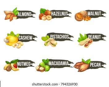 Nuts logo set. Vector labels with macadamia, pecan, walnut, cashew, peanut, almond, pistachios, nutmeg and hazelnut icons. Beautiful emblems isolated on background.